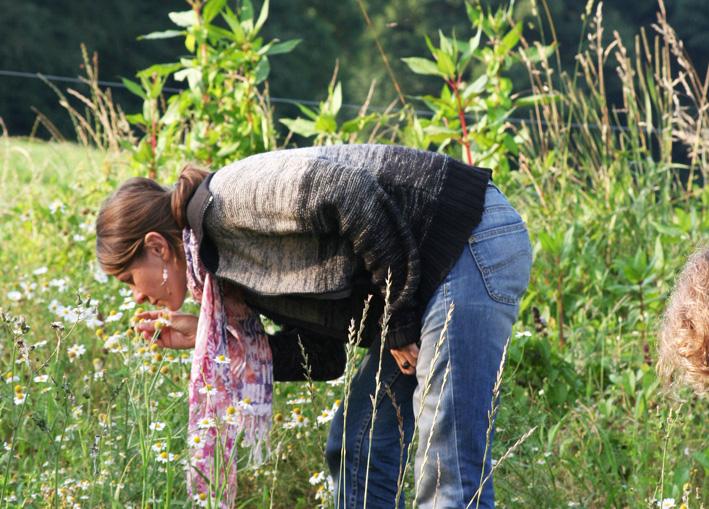 Wahrnehmung Wildnisschule Waldkauz