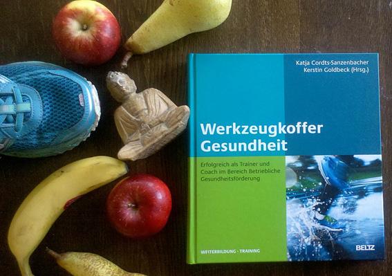Werkzeugkoffer Gesundheit Buch